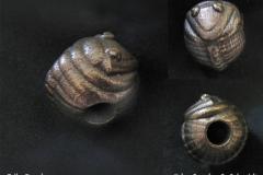 trilobead